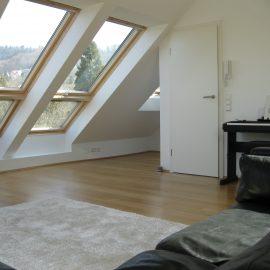 Umbau eines Wohnhauses aus den 30er Jahren für eine musizierende Familie Freiburg-Herdern